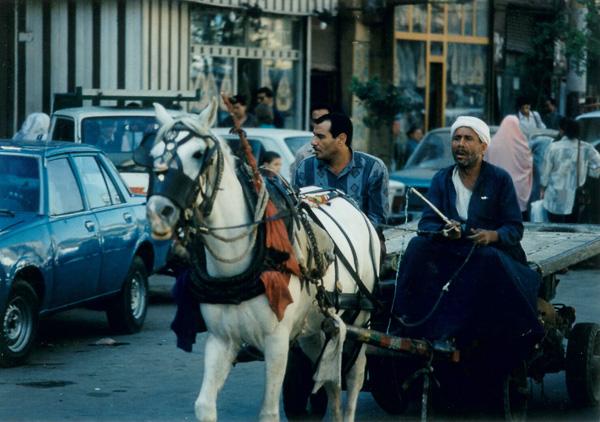 1996bEgypt-20