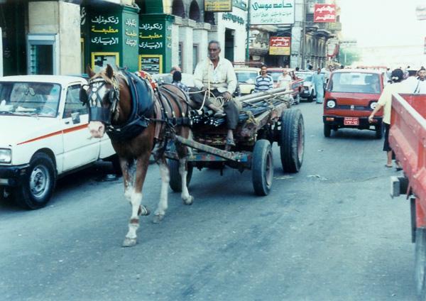 1996bEgypt-31