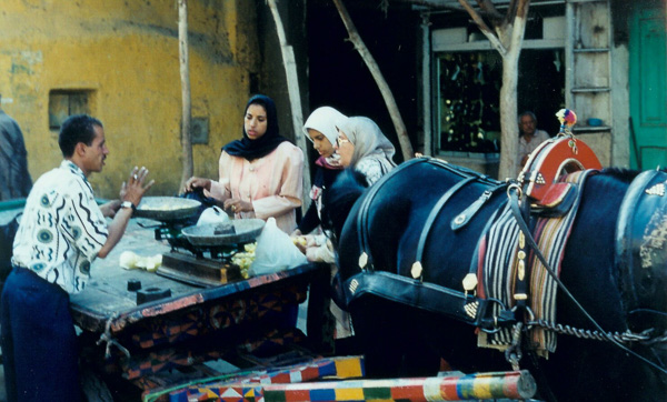 1996bEgypt-48