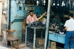 1996bEgypt-69