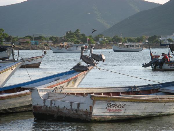 2006cVenezuela-40