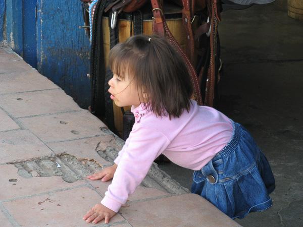 2006cVenezuela-98